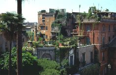roof top gardens Rome