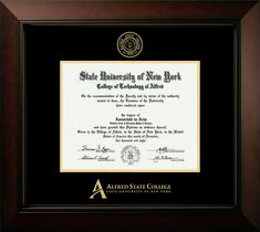 Signature Announcements Tennessee-State-University Undergraduate Name /& Tassel Graduation Diploma Frame 16 x 16 Cherry Professional//Doctor Sculpted Foil Seal