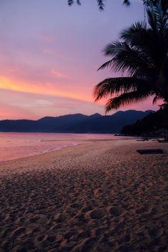 Imagem de beach, summer, and sunset