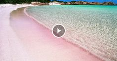 Bianche, nere, di sassi o di sabbia: al mondo ci sono spiagge di tutti i tipi.Ma la spiaggia rosa più bella del mondo è lei, ed è italiana:la spiaggia rosa di Budelli, in Sardegna, nell'arcipelago d
