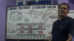 COLON IRRITABLE SE CURA EN 15 DÍAS SIN MENTIRAS, SIN ENGAÑOS MÉDICOS - YouTube