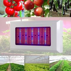 86.01$  Buy here - http://alifan.worldwells.pw/go.php?t=32742678925 - Full Spectrum 300W LED Grow Light Red/Blue/White/UV/IR AC85~265V SMD5730 Led Plant Lamp Best For Growing and Flowering Wholesale 86.01$