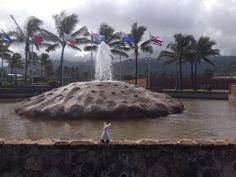 On the edge  Polynesian cultural center entrance #hawaii #llama #squirtz #followme #worldtravel #llamalucious #lovellamas #fluffyfriend #fountain #waterfeature #flags