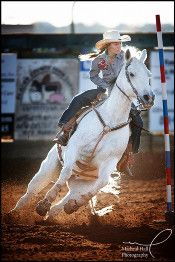 Reining barrel racing rodeo western ranch cowboy cowgirl farm show performance equine horse equestrian pony quarter charro vaquero gymkhana sliding stop cutting cowhorse