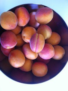Rezept für einen Aprikosenkuchen - ganz einfach und lecker! Dieser Aprikosenkuchen ist schnell gebacken, und so lecker. Er wird mit zerbröselten Amarettini gebacken. Gelingt garantiert!