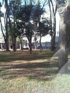 Jardim da UMESP