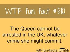 Funny Facts That You Never Knew Were True