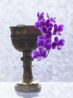 Orchid branch in the goblet by Daykiney.deviantart.com on @DeviantArt
