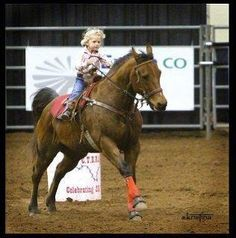 Cutting western quarter paint horse appaloosa equine tack cowboy cowgirl rodeo ranch show ponypleasure barrel racing pole bending saddle bronc gymkhana by Suzy Duzy