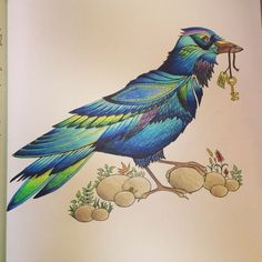 Enchanted Forest Coloring Book, Enchanted Forest Colouring, Adult Coloring, Secret Garden, Indigo Bird, Basford Coloring, Coloring Books