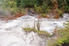 Mud Pools Destruction, Mud, Pools, New Zealand, Terrace, Waterfall, River, Park, Places
