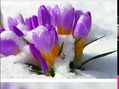Февраль   старт в новый год