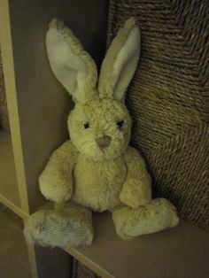 Found at on 02 Jan. 2016 by Sara Stewart: Bunny found on a path in Malvern Wells behind Homestead Close and on the way to St Wulstans Nature Reserve. Nature Reserve, Wells, Pet Toys, Homestead, Bunny, Teddy Bear, Animals, Animaux, Hare