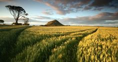 10 picture perfect locations in East Lothian