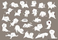 chaton-rough02.jpg ★ Find more at http://www.pinterest.com/competing/