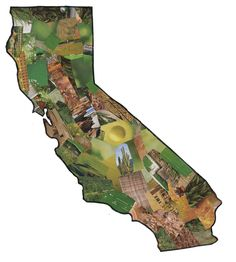 Art Projects for Kids: California Collage  for 4th grade regions? do each state.