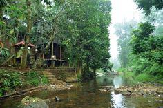 Ranches Jungle Beats Resorts (Meppadi, Indien): 5 Hotel-bewertungen – TripAdvisor