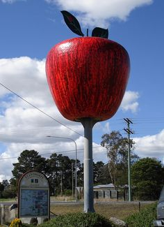 The Big Apple, Stanthorpe, QLD.
