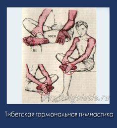 Тибетская гормональная гимнастика. Массаж ступней Health, Reiki, Workout, Medicine, Salud, Health Care, Work Outs, Healthy