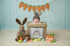 Easter Mini Session newborn photography http://www.lisashieldsphotography.com/