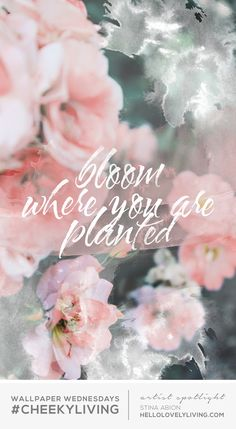 Bloom where you are planted wallpaper for phone Wallpapers Gospel, Plant Wallpaper, Bloom Where You Are Planted, Cute Quotes, Girly Quotes, Work Quotes, Pastel Quotes, Floral Quotes, Nice Sayings