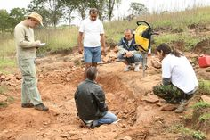 Kleber Varnier and equip of research and teachers think about more of 90 millions of years ago, a excavation for new reptlian.- 2008.
