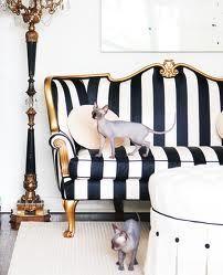 luxurious black & white striped sofa with gold frame Black And White Sofa, Black White Rooms, White Sofas, Black White Stripes, Bold Stripes, White Gold, White Chic, Black And White Furniture, Black Couches