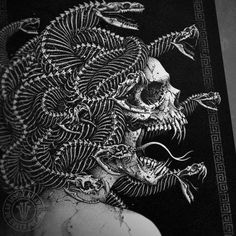 "teratomarty: "" deadinsidegraphics: ""'Medusa' is perhaps the most intricate snake skeleton graphic I've drawn, I have some prints available from the store eugenpoe.bigcartel.com #art #artwork #graphic #drawing #illustration #design #medusa #monster..."