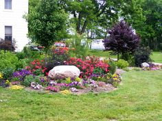 This backyard flower garden is landscaped with colorful flowers and a large boulder.