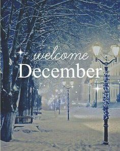 Hello December ☃ : QUOTATION – Image : Quotes Of the day – Description Welcome December Sharing is Power – Don't forget to share this quote ! Seasons Months, Days And Months, Months In A Year, 12 Months, December Images, December Pictures, 1st December, Hello Winter, New Month