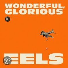 GO BUY THIS! IT'S FUCKIN GREAT!  Wonderful, Glorious (Deluxe Edition), Eels
