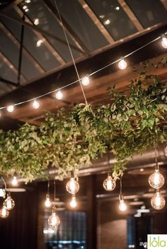 LOLA Event Productions | Morgan Manufacturing Wedding | Averyhouse  Photography | Wedding Photography | Loft Wedding | Chicago Wedding | Wedding Details |  Decor |  Wedding Decor  | greenery | Wedding Lighting | Exquisite Designs | Suspended greenery | Living chandelier