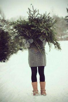 Bonjour décembre!