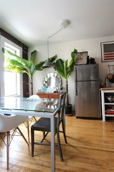 A Banana Tree in a Brooklyn Kitchen Kitchen Spotlight | The Kitchn