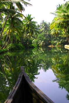 Kerala, India www.whywaittravel... @contreniatrvels on twitter Why Wait Travels on FaceBook #travelconsultant #travelspecialist