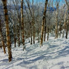 Ski sauvage dans la fantaisie  mont Sutton, québec, canada