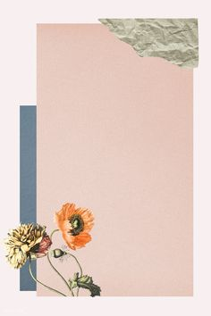 Collage Background, Flower Background Wallpaper, Flower Backgrounds, Background Patterns, Wallpaper Backgrounds, Scrapbook Background, Background Vintage, Instagram Frame Template, Photo Collage Template
