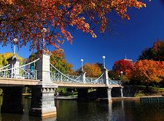 Pedestrian bridge at the Boston Public Garden. One of the most romantic locations in all of Boston. Boston Common, In Boston, Visit Boston, Boston Town, Boston Strong, Places To See, Places To Travel, Boston Public Garden, Mall Of America