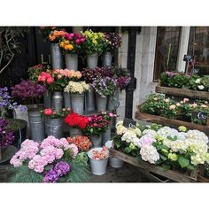 Good Morning and happy Monday! Here's to the start of a new week [don't forget to take time and smell the roses ] This is a small flower shop display Crystal came across in London this Summer - what's YOUR favorite flower?