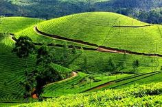 Image result for india's most popular tourist place
