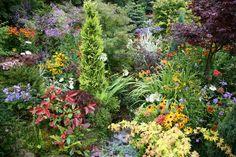 The perfect feel good garden.