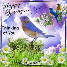 André Rieu - ✿Spring Flowers✿ Free Happy Spring eCards | 123 Greetings