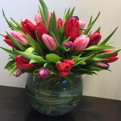 Tulip Classic Boston flower delivery