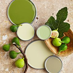 Earthy Greens (pictured: Grape Leaves, Soft Opal, Spring Cactus, Mellowed Ivory, and Green Pond)