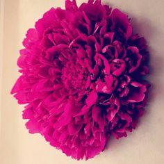 Giantpaperflower#creppaper#decorationwall#handmade#paperartist#diy#papercrafter🌸🌸🌸