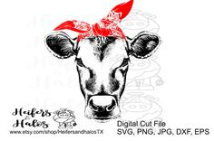 Bandana heifer cow - svg cut file for cricut and silhouette. Great for t-shirts, decals, cup designs by HeifersandhalosTX on Etsy