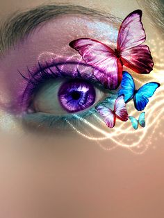 Butterfly people have oddly coloured eyes Pretty Eyes, Cool Eyes, Beautiful Eyes, Beautiful Things, Eye Makeup Art, Eye Art, Makeup Eyes, Butterfly Eyes, Butterfly Makeup