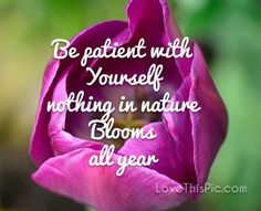 Be patient  quotes quote life inspirational wisdom lesson