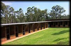 cat kennels for boarding | Having a dog boarding kennel. | Dog & Cat House Ideas