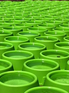 Galleri modern: Meget grønt